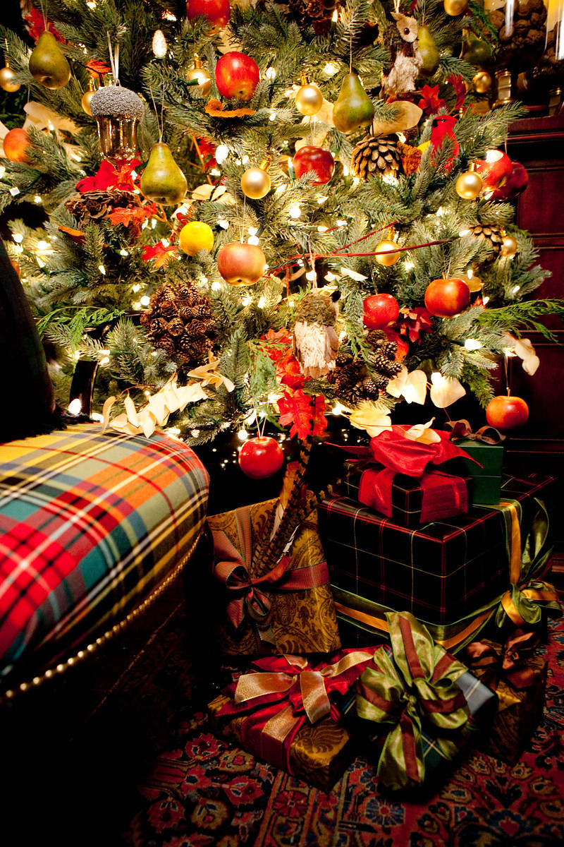 gorgeous gifts under the tree